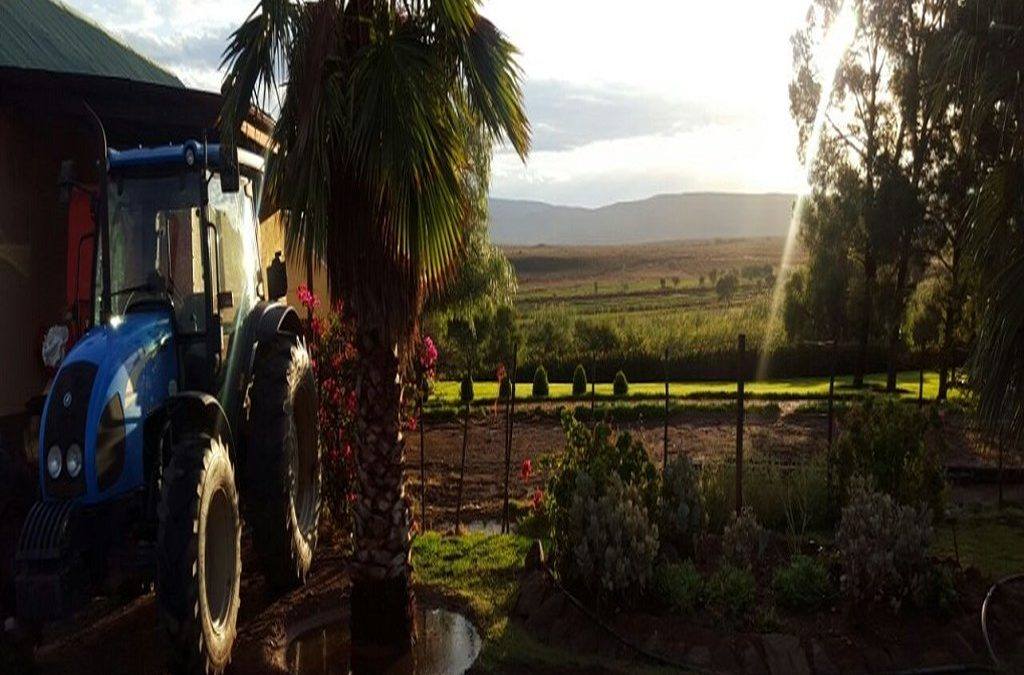 De Denne Country Guest House – Outdshoorn