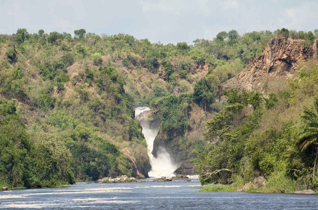 Wildlife And Primates at Murchison Falls & Ngamba Island – 5 Nights/6 Days