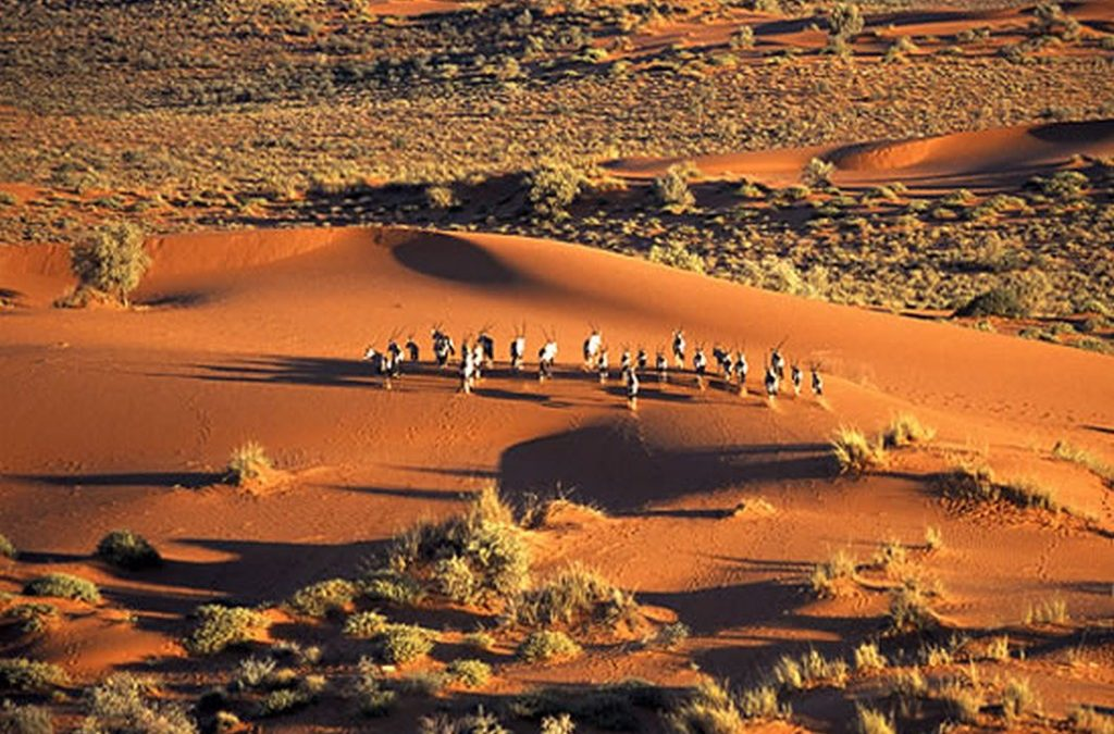 Cape, Kalahari & Dunes Premium Adventure – 10 Nights/11 Days